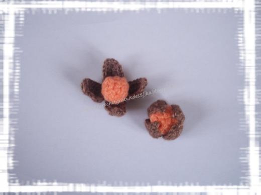 Physalis au crochet